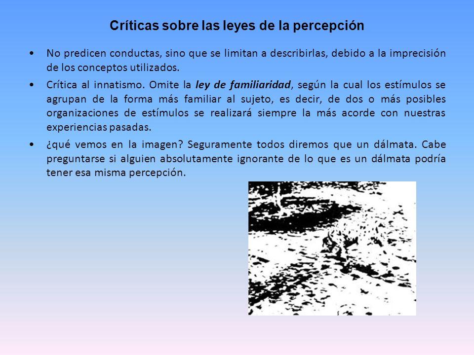Críticas sobre las leyes de la percepción