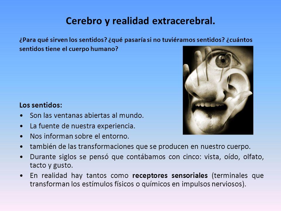 Cerebro y realidad extracerebral.