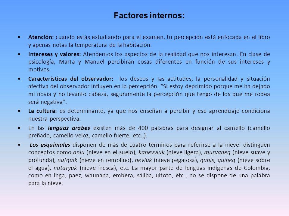 Factores internos: