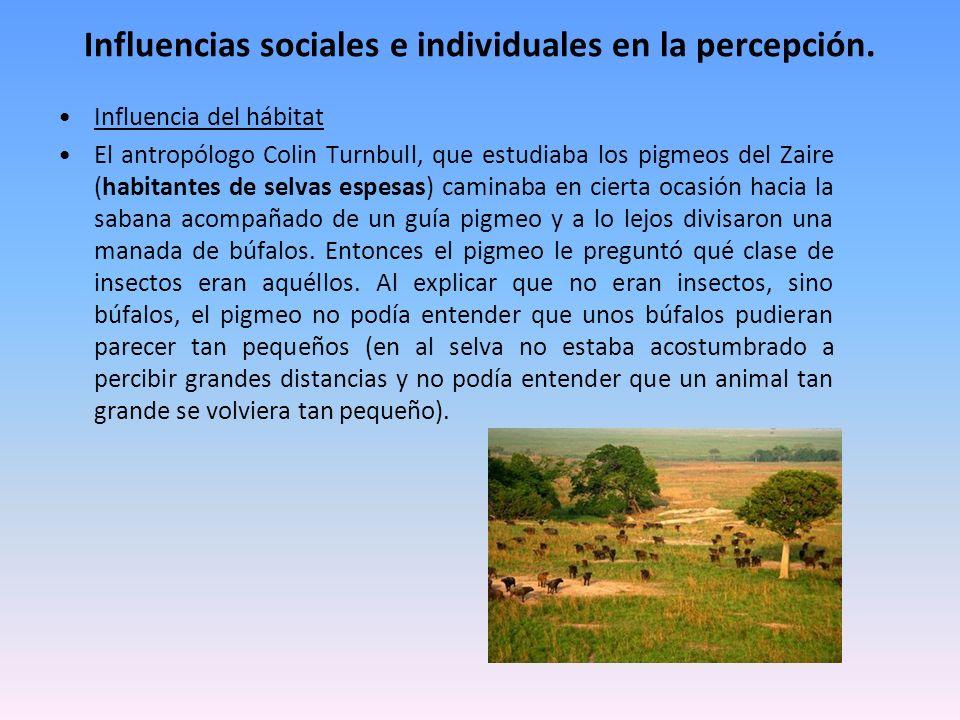 Influencias sociales e individuales en la percepción.