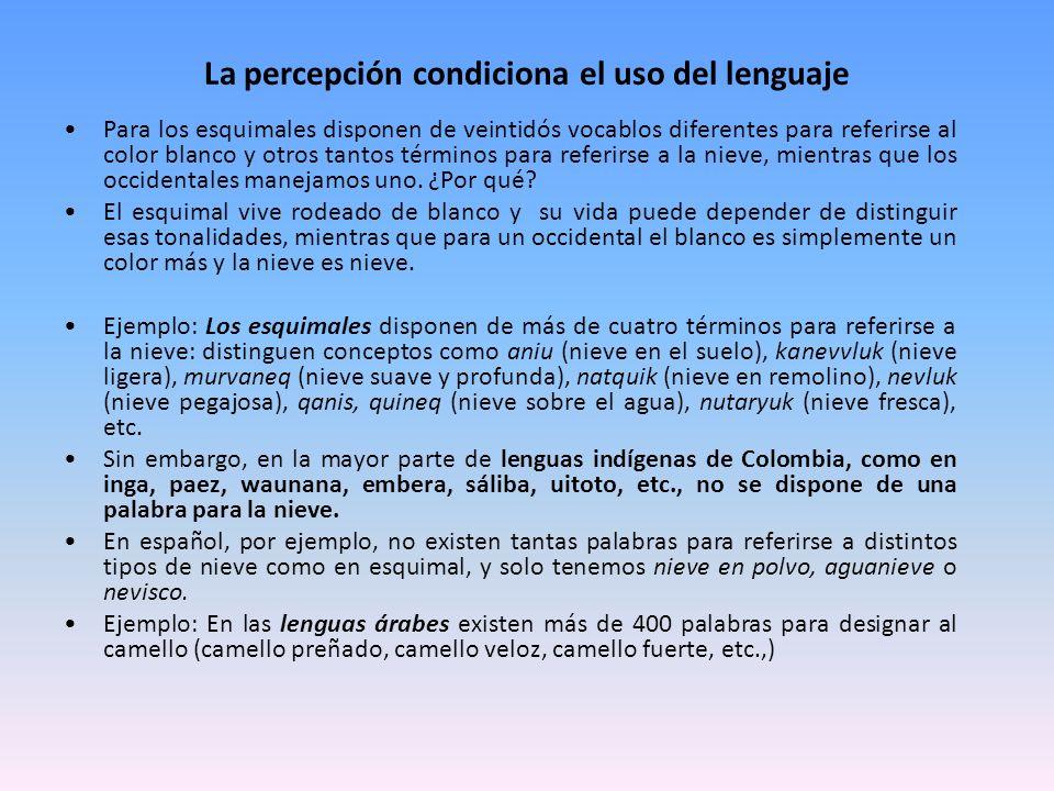 La percepción condiciona el uso del lenguaje