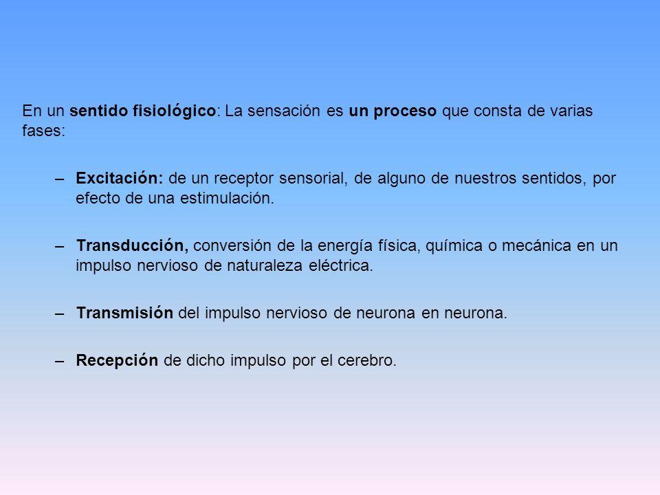 En un sentido fisiológico: La sensación es un proceso que consta de varias fases: