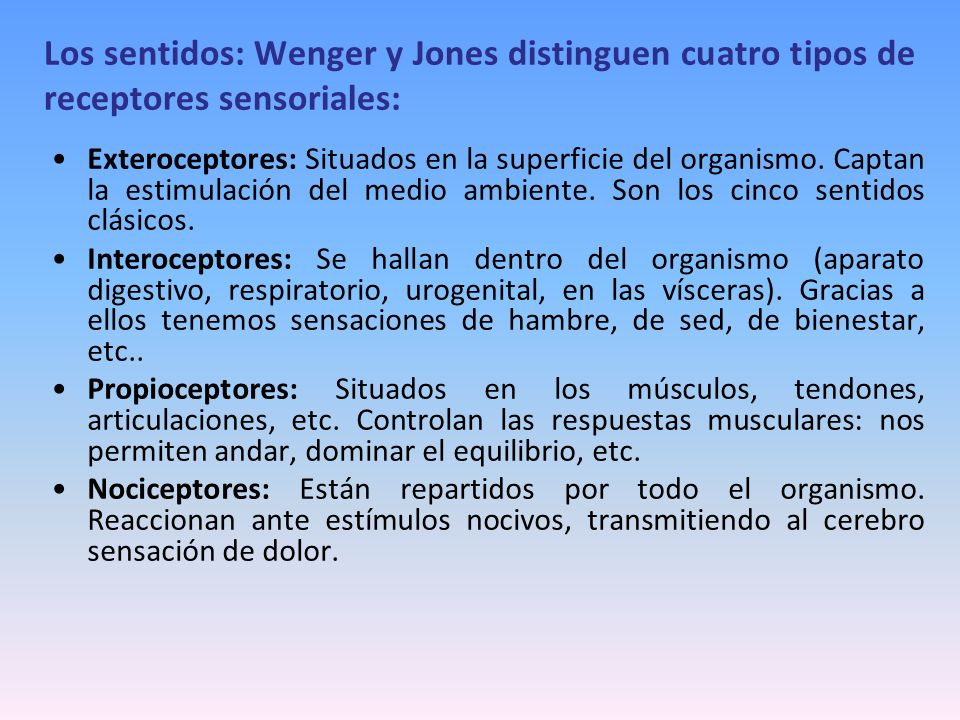 Los sentidos: Wenger y Jones distinguen cuatro tipos de receptores sensoriales: