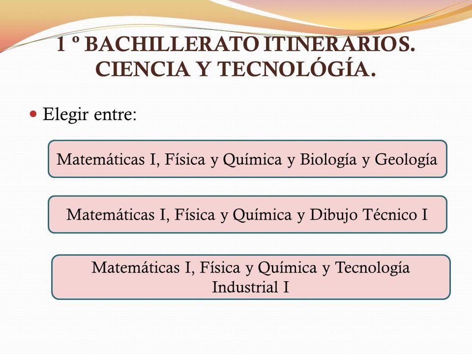 1 º BACHILLERATO ITINERARIOS. CIENCIA Y TECNOLÓGÍA.