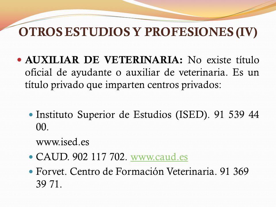 OTROS ESTUDIOS Y PROFESIONES (IV)