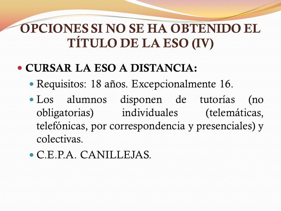 OPCIONES SI NO SE HA OBTENIDO EL TÍTULO DE LA ESO (IV)