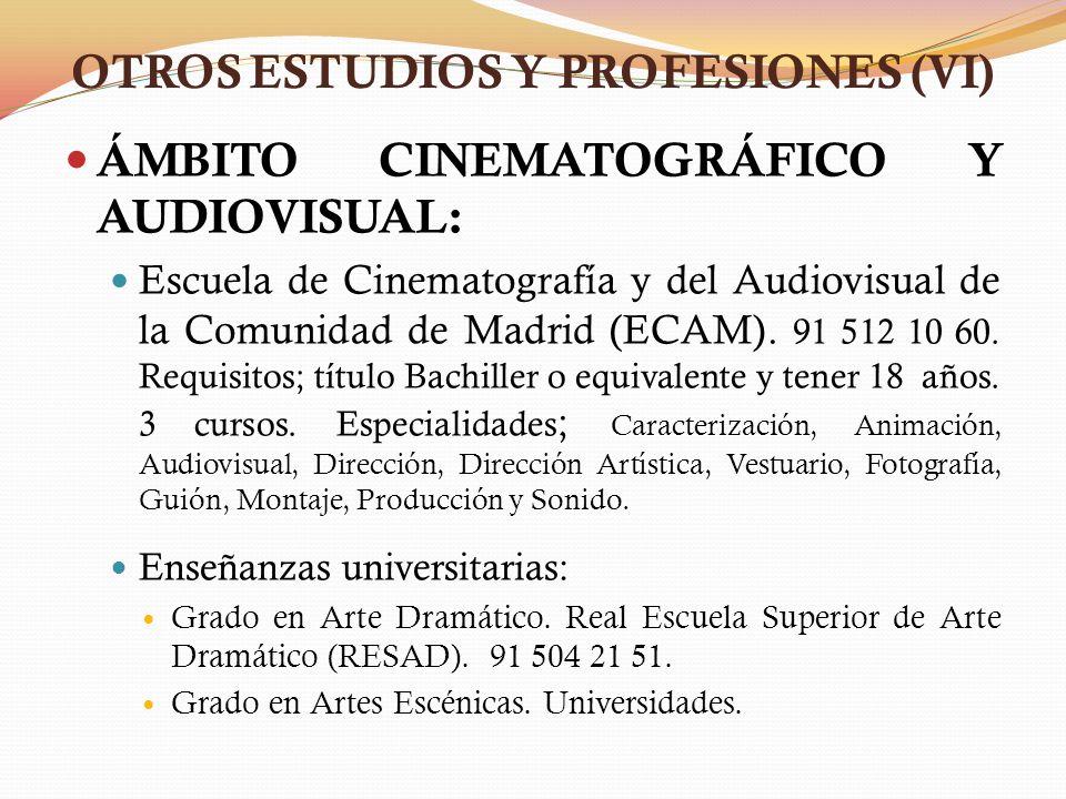 OTROS ESTUDIOS Y PROFESIONES (VI)