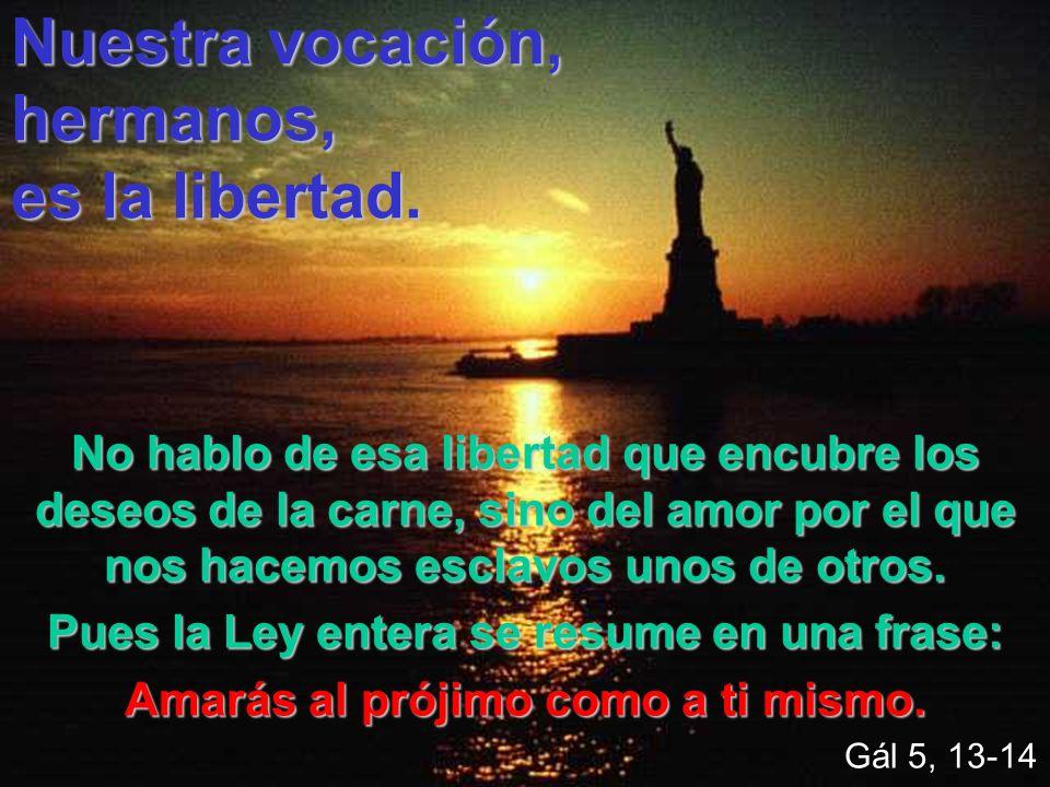 Nuestra vocación, hermanos, es la libertad.