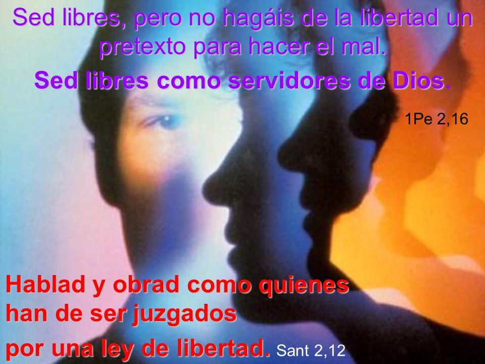 Sed libres, pero no hagáis de la libertad un pretexto para hacer el mal. Sed libres como servidores de Dios. 1Pe 2,16
