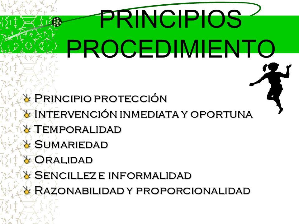 PRINCIPIOS PROCEDIMIENTO
