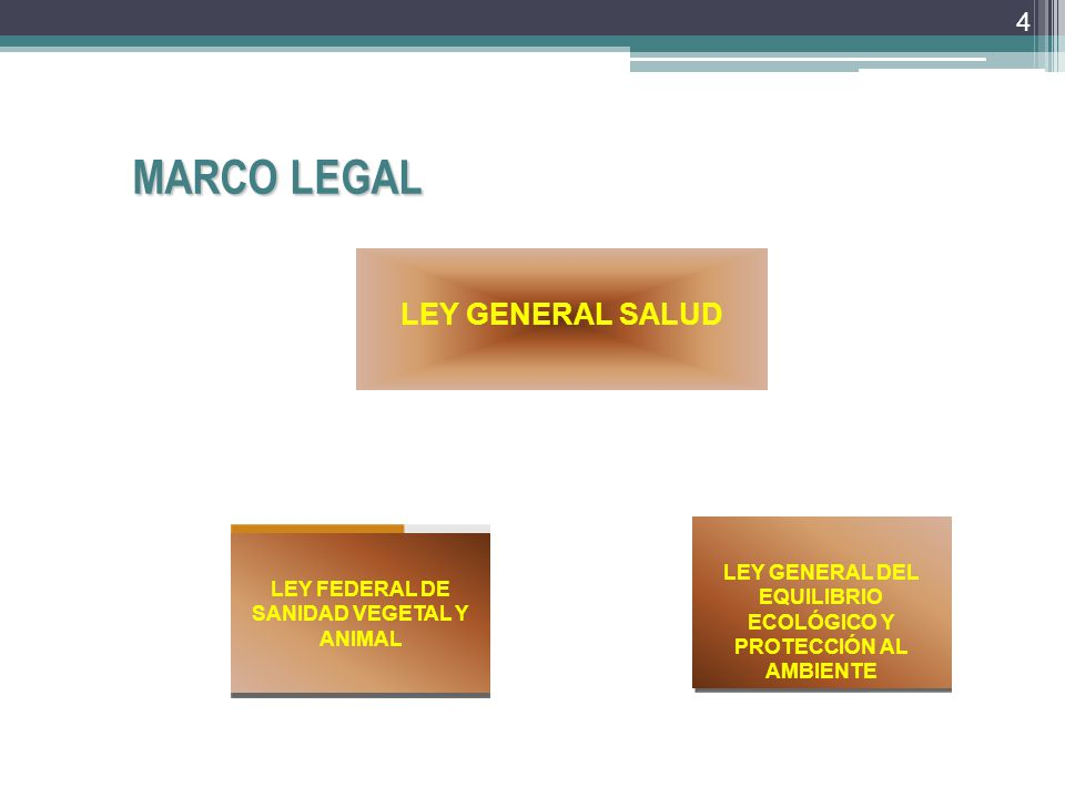 MARCO LEGAL LEY GENERAL SALUD