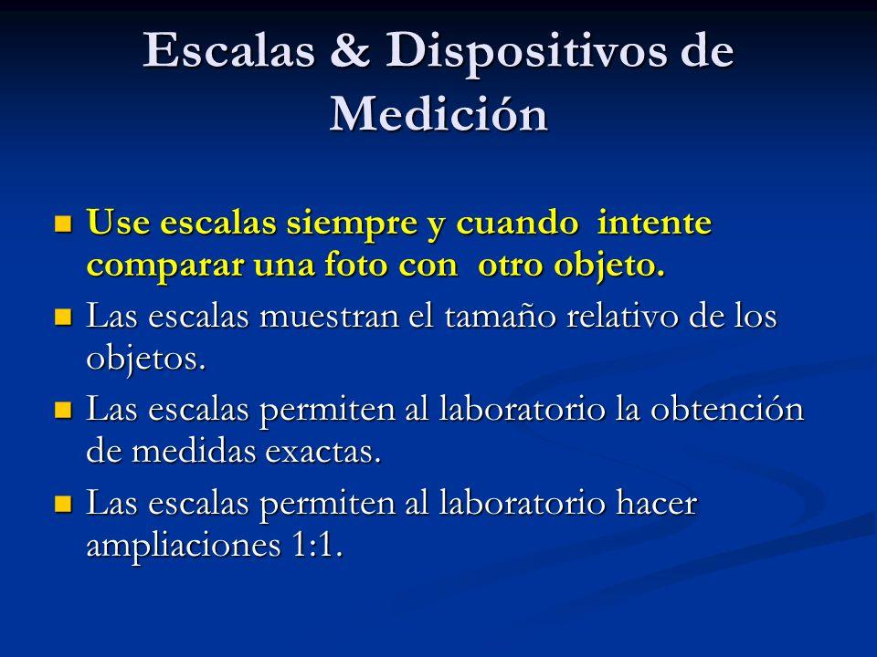 Escalas & Dispositivos de Medición