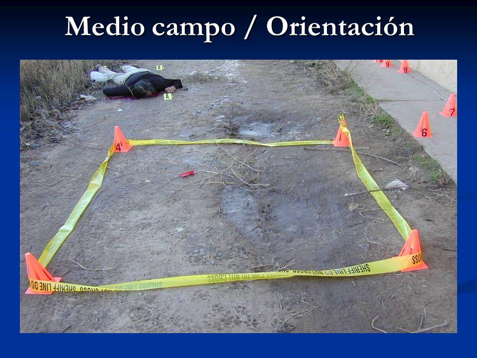 Medio campo / Orientación