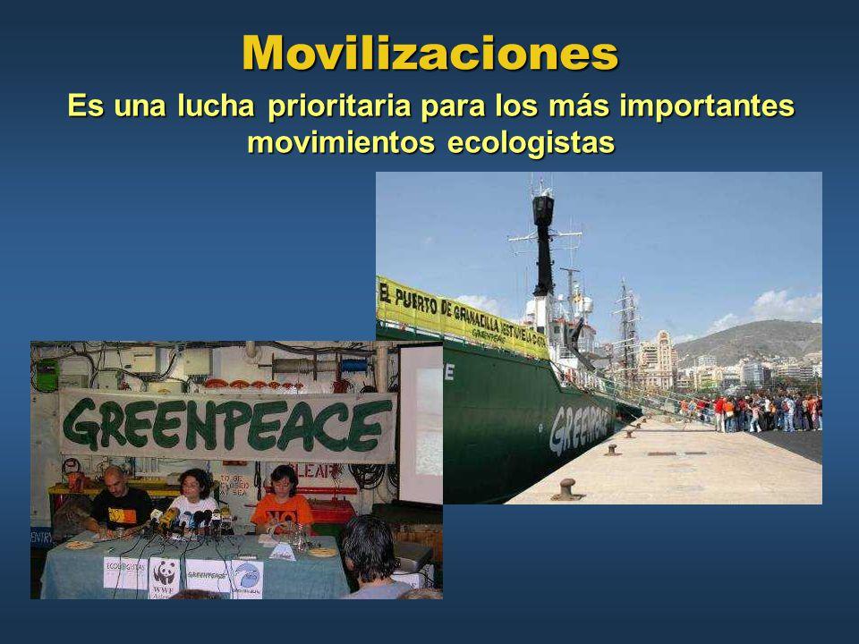 Movilizaciones Es una lucha prioritaria para los más importantes movimientos ecologistas
