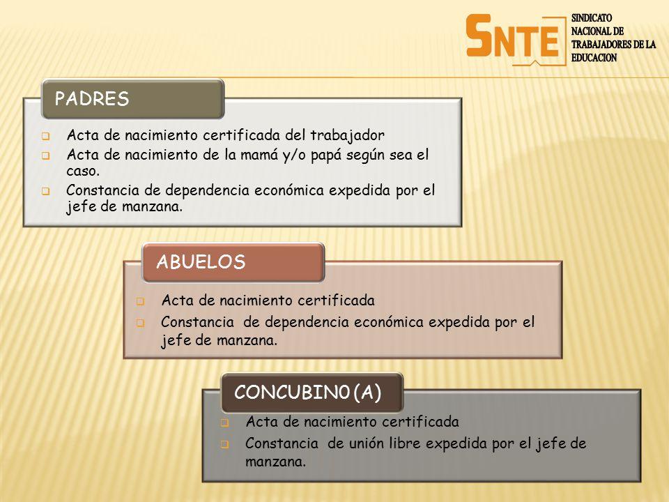 PADRES ABUELOS CONCUBIN0 (A) SINDICATO NACIONAL DE TRABAJADORES DE LA