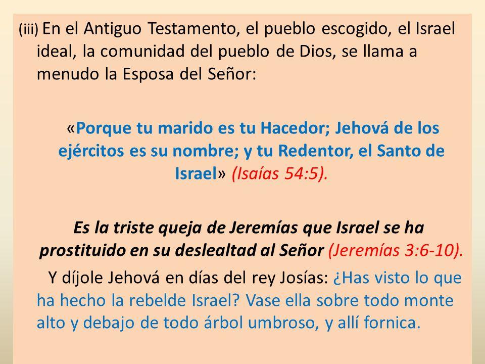(iii) En el Antiguo Testamento, el pueblo escogido, el Israel ideal, la comunidad del pueblo de Dios, se llama a menudo la Esposa del Señor: