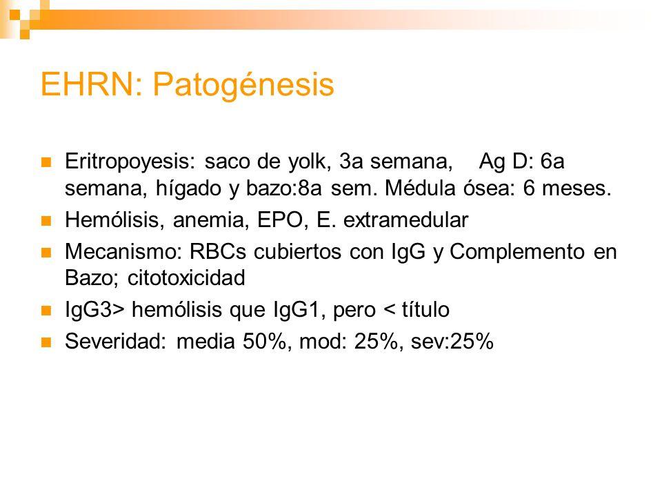 EHRN: Patogénesis Eritropoyesis: saco de yolk, 3a semana, Ag D: 6a semana, hígado y bazo:8a sem. Médula ósea: 6 meses.