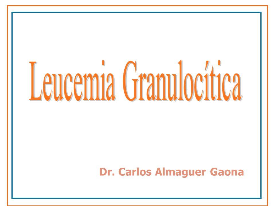 Leucemia Granulocítica