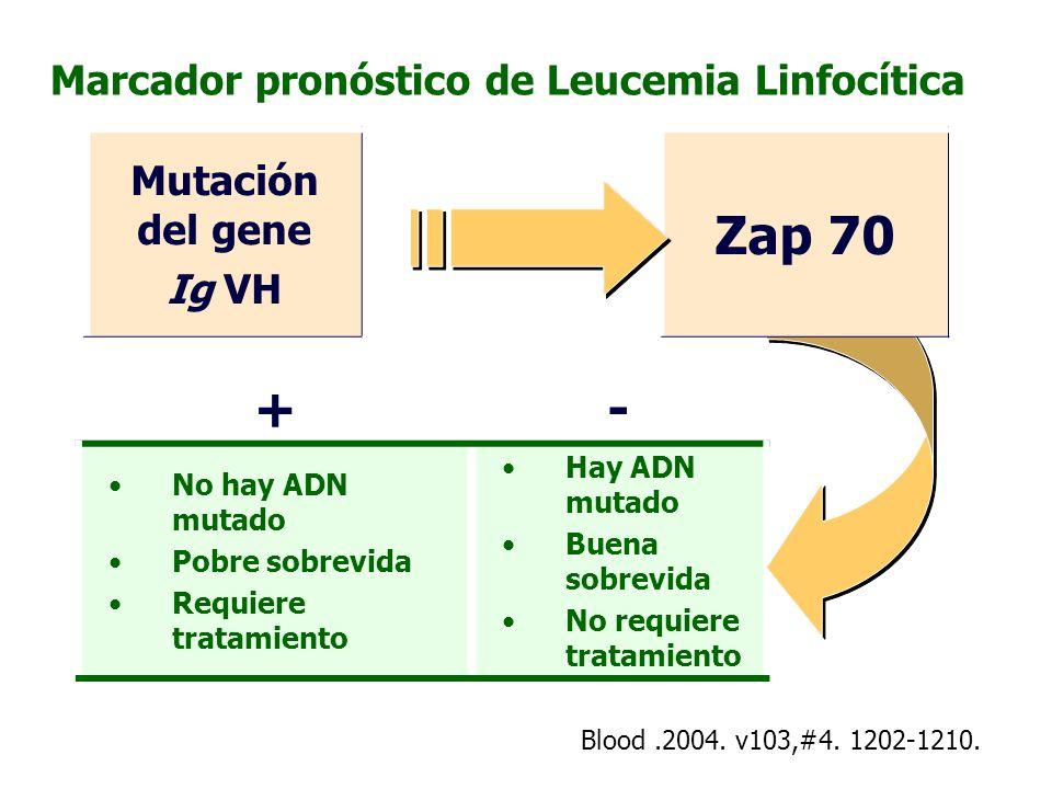 Marcador pronóstico de Leucemia Linfocítica