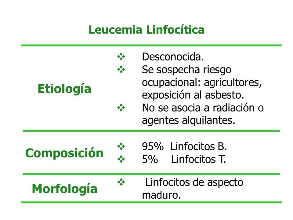 Etiología Composición Morfología