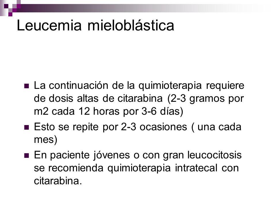 Leucemia mieloblástica