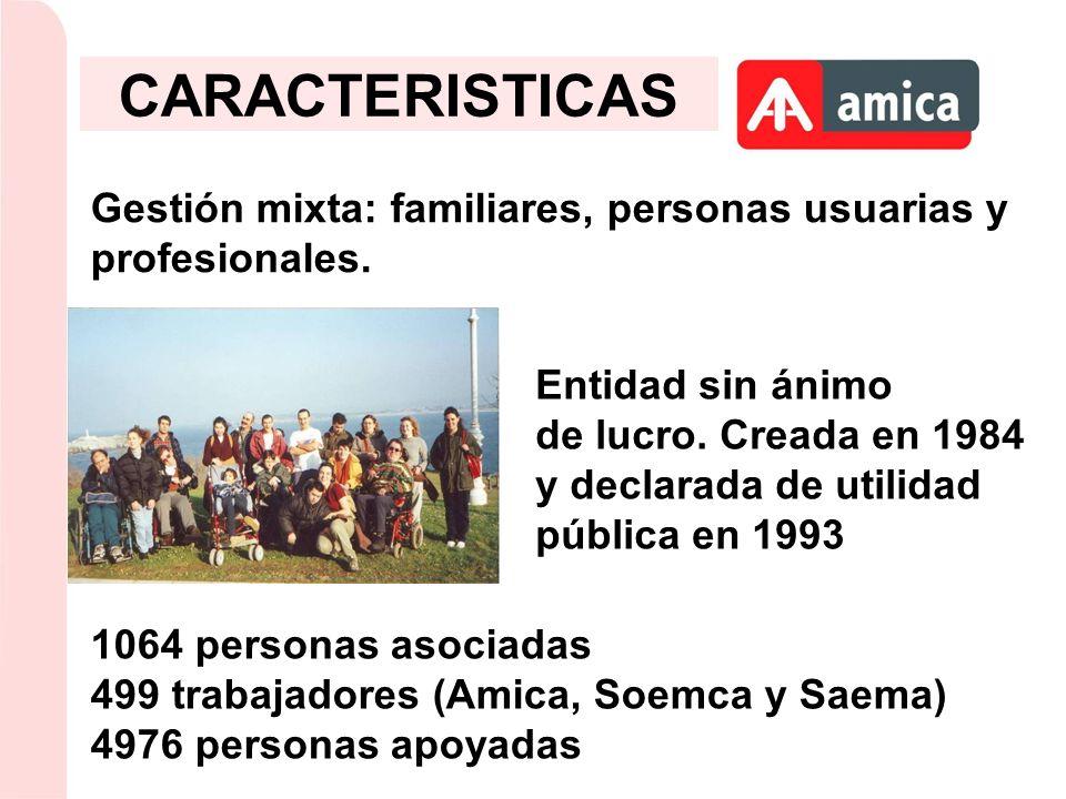 CARACTERISTICAS Gestión mixta: familiares, personas usuarias y profesionales. Entidad sin ánimo.
