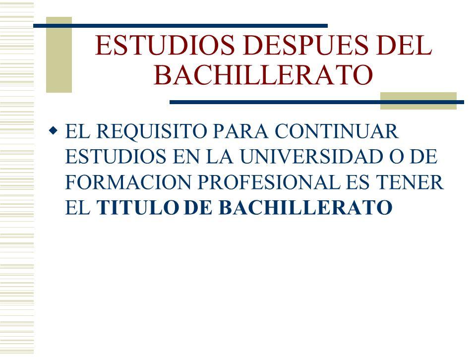 ESTUDIOS DESPUES DEL BACHILLERATO