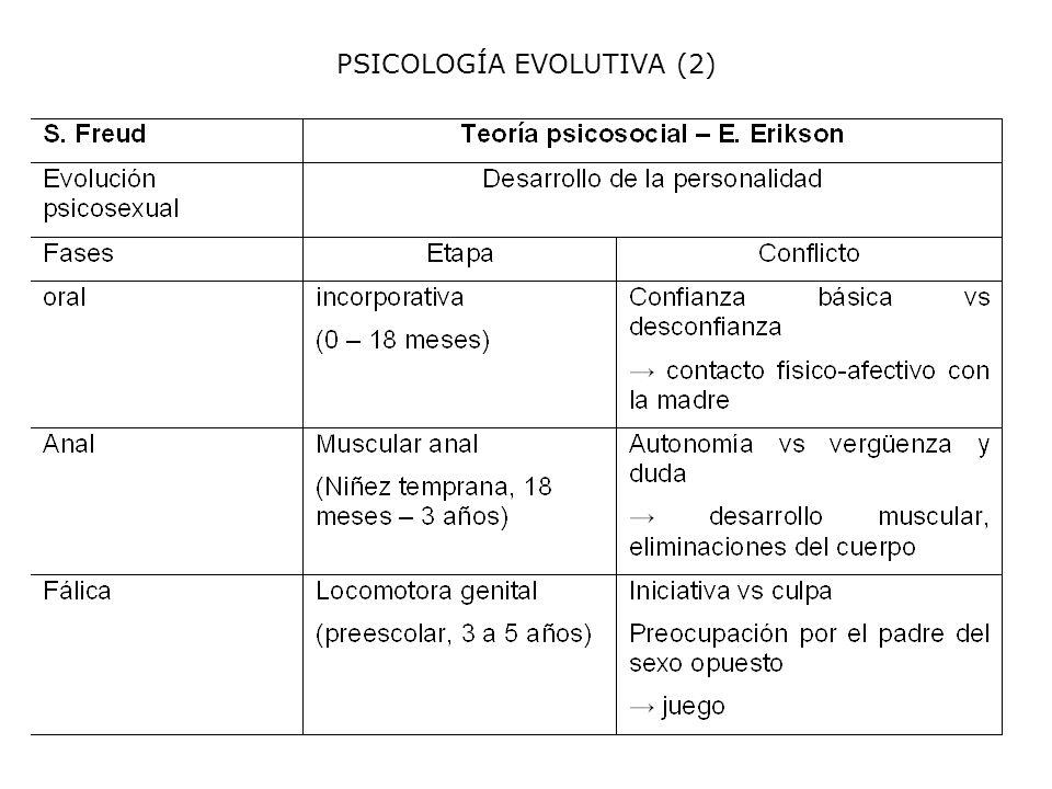 PSICOLOGÍA EVOLUTIVA (2)