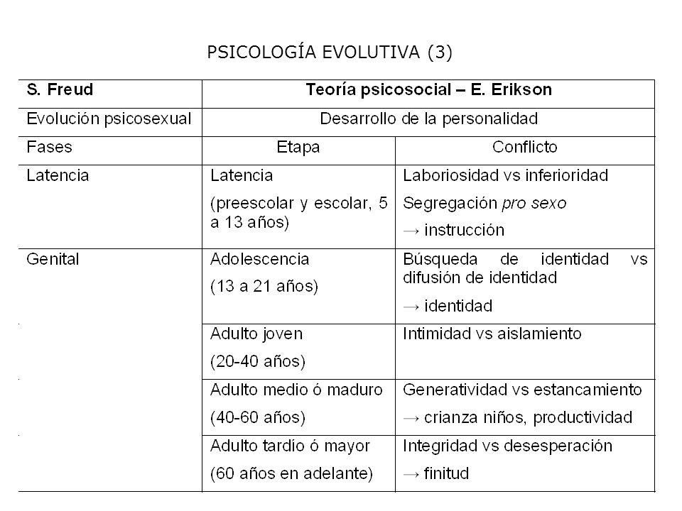 PSICOLOGÍA EVOLUTIVA (3)