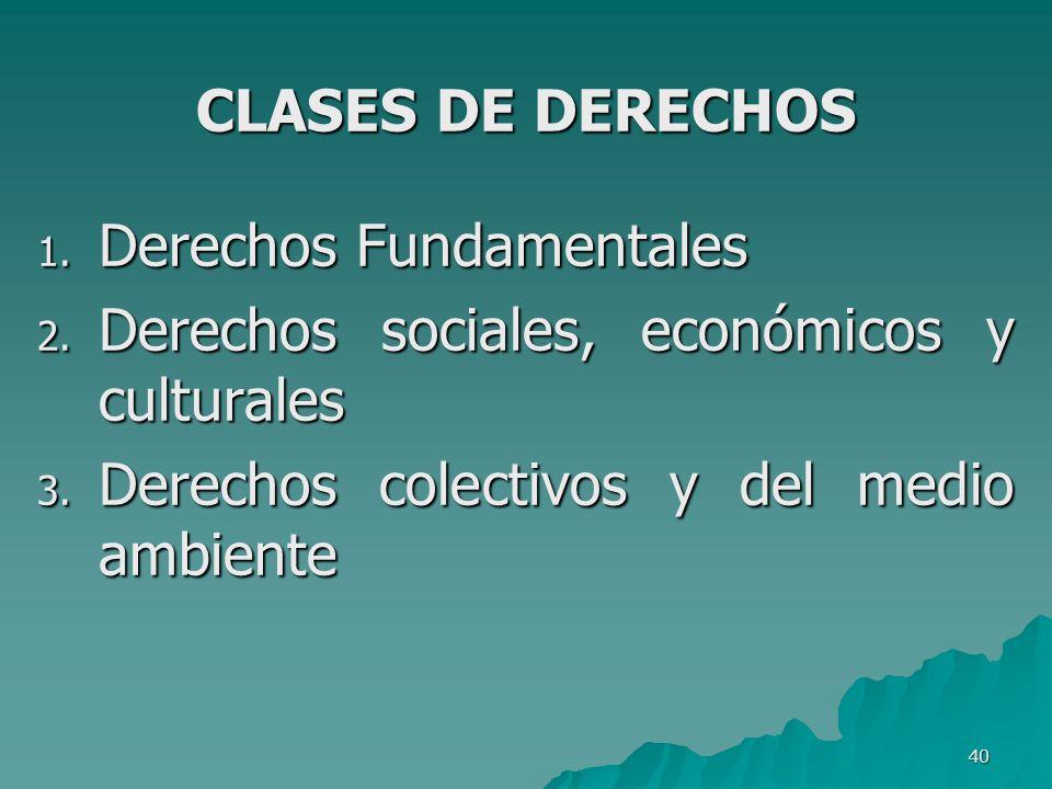 Derechos Fundamentales Derechos sociales, económicos y culturales