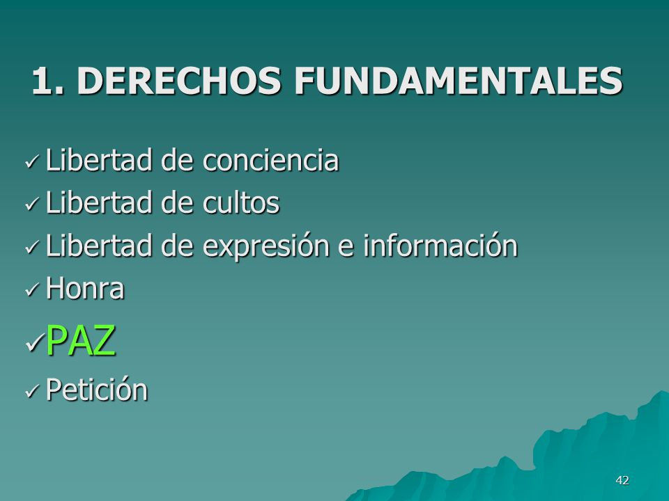 1. DERECHOS FUNDAMENTALES