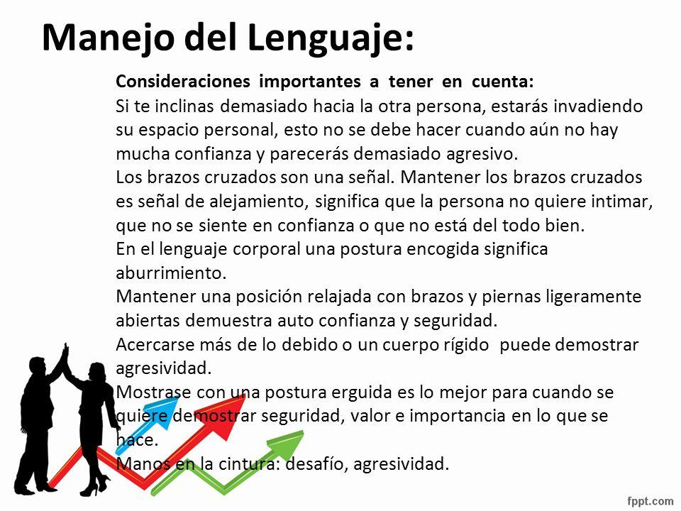 Manejo del Lenguaje: Consideraciones importantes a tener en cuenta: