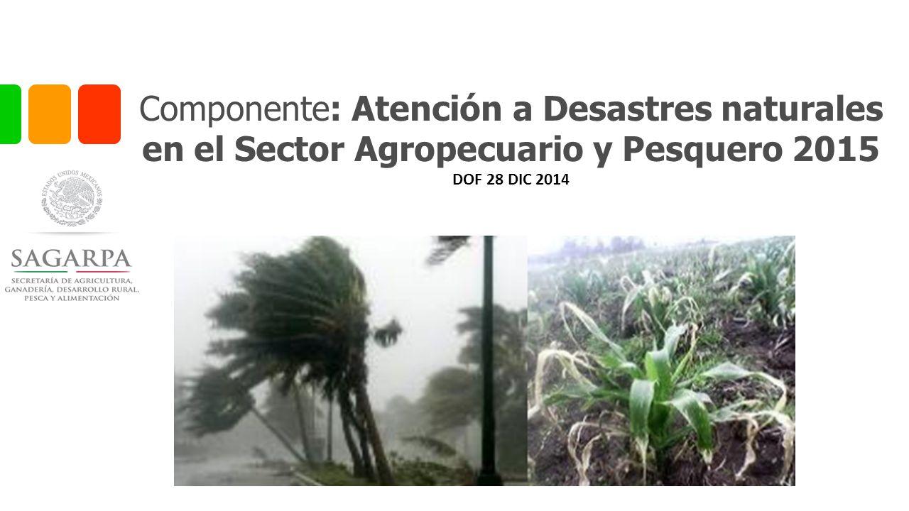 Componente: Atención a Desastres naturales en el Sector Agropecuario y Pesquero 2015