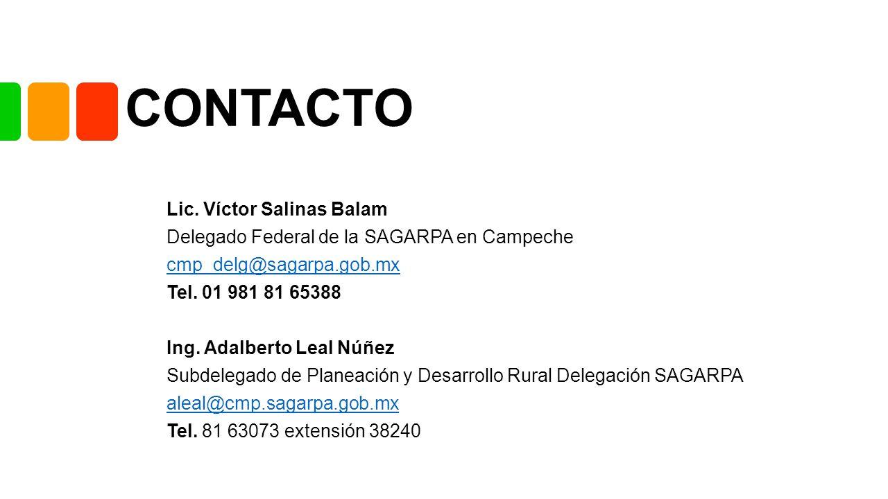 CONTACTO Lic. Víctor Salinas Balam