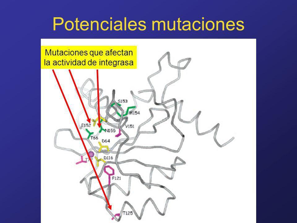 Potenciales mutaciones