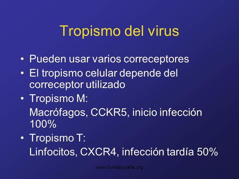 Tropismo del virus Pueden usar varios correceptores