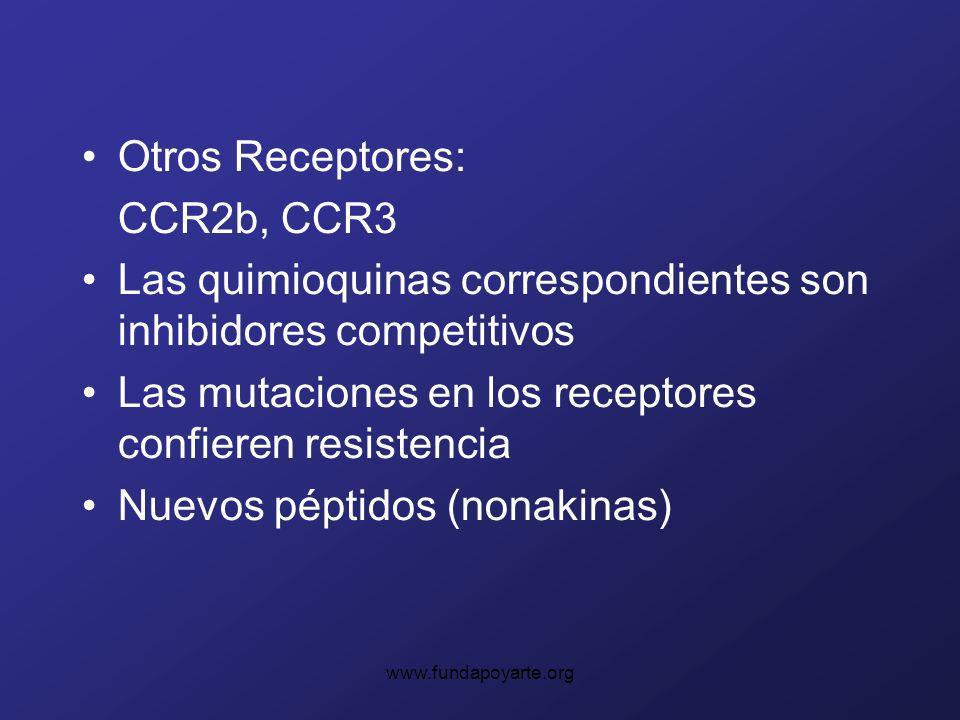 Las quimioquinas correspondientes son inhibidores competitivos