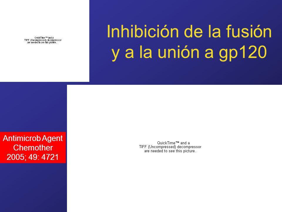 Inhibición de la fusión y a la unión a gp120