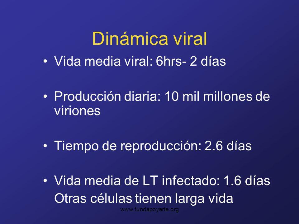 Dinámica viral Vida media viral: 6hrs- 2 días