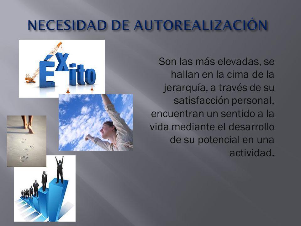 NECESIDAD DE AUTOREALIZACIÓN