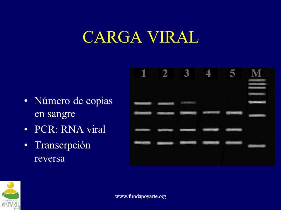 CARGA VIRAL Número de copias en sangre PCR: RNA viral