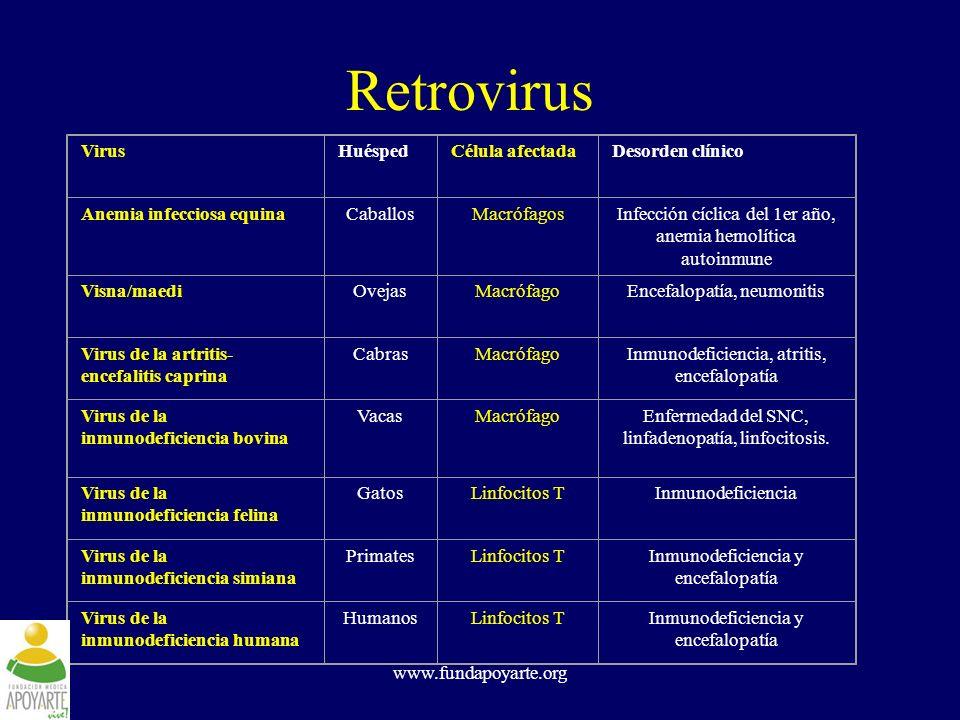 Retrovirus Virus Huésped Célula afectada Desorden clínico