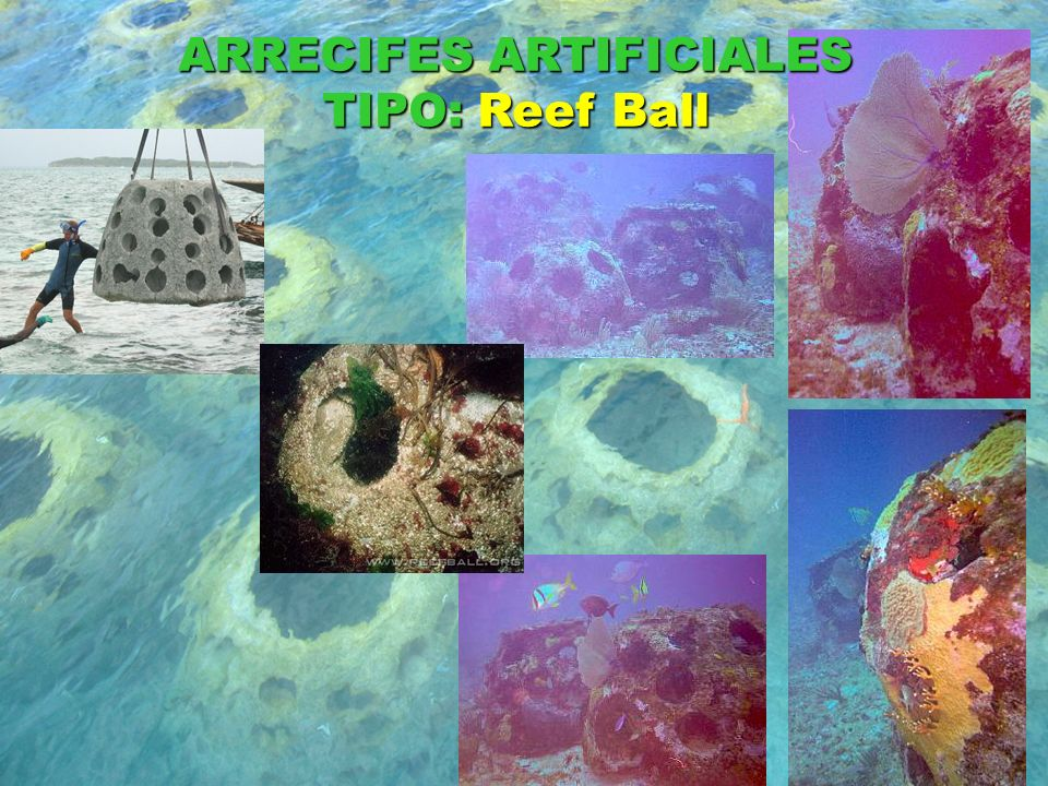 ARRECIFES ARTIFICIALES TIPO: Reef Ball