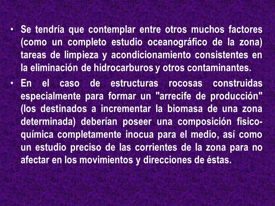 Se tendría que contemplar entre otros muchos factores (como un completo estudio oceanográfico de la zona) tareas de limpieza y acondicionamiento consistentes en la eliminación de hidrocarburos y otros contaminantes.