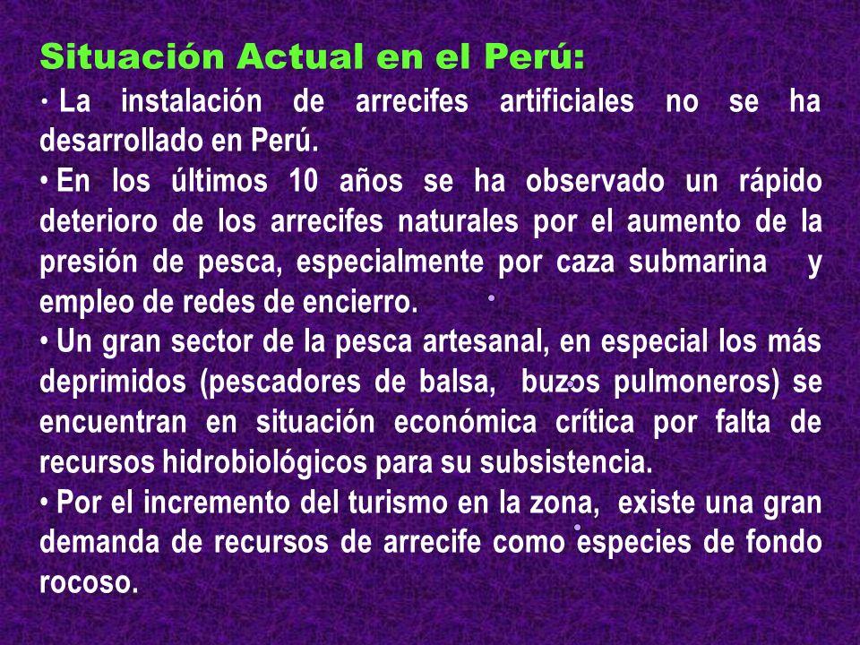 Situación Actual en el Perú: