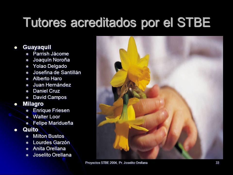 Tutores acreditados por el STBE
