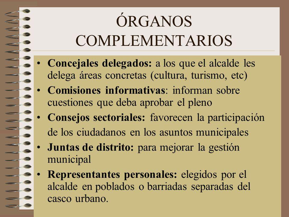 ÓRGANOS COMPLEMENTARIOS