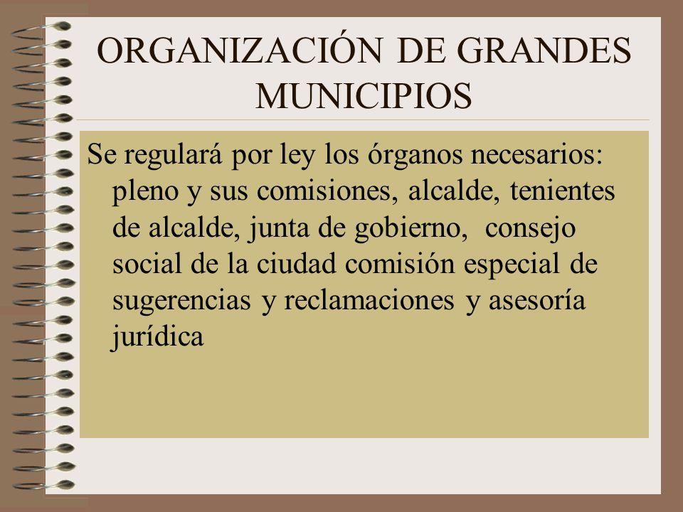 ORGANIZACIÓN DE GRANDES MUNICIPIOS