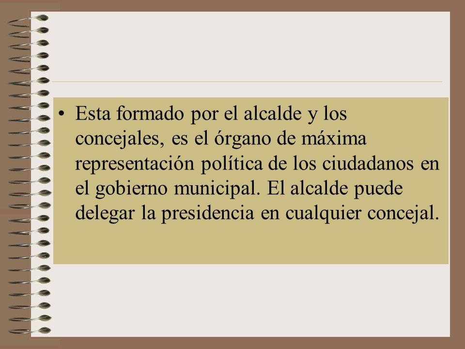 Esta formado por el alcalde y los concejales, es el órgano de máxima representación política de los ciudadanos en el gobierno municipal.
