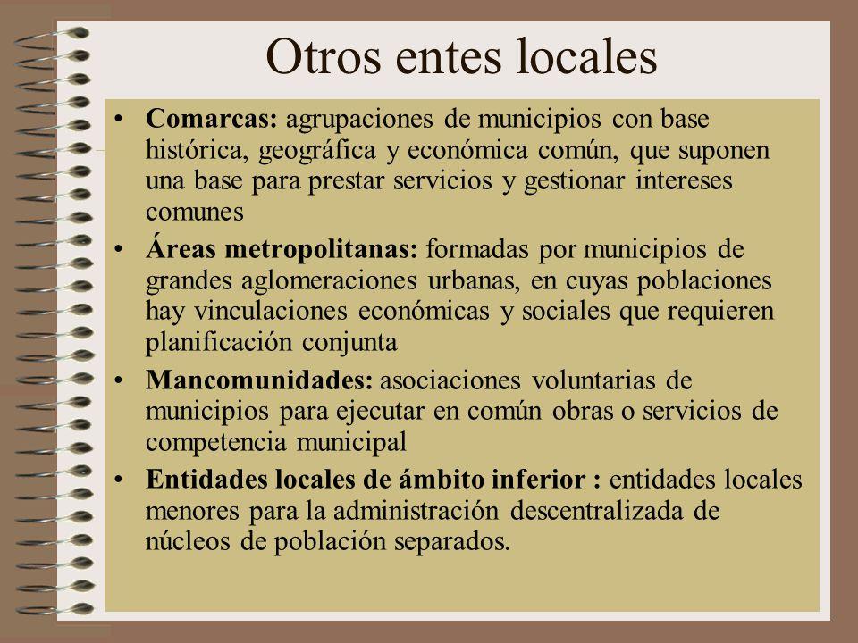 Otros entes locales